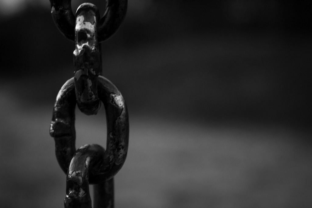 Quantity, Relevancy, and Quality: Which Link Building Strategy is Most Important for SEO?